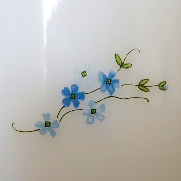 glasburk-veronica-myosotis-arcopal-france-8