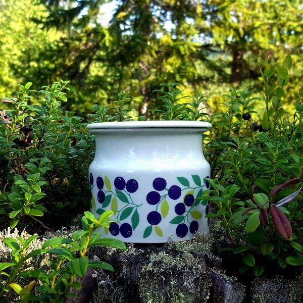 burk-blåbär-pomona-arabia-raija-uosikkinen-1