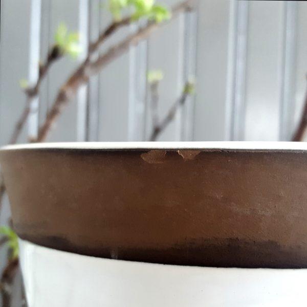 blomkruka-rondo-upsala-ekeby-mari-simmulson-7