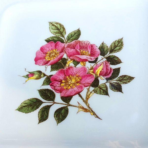 assietter-briar-rose-Ø-13-cm-wedgewood-of-etruria-&-barlaston-england-6